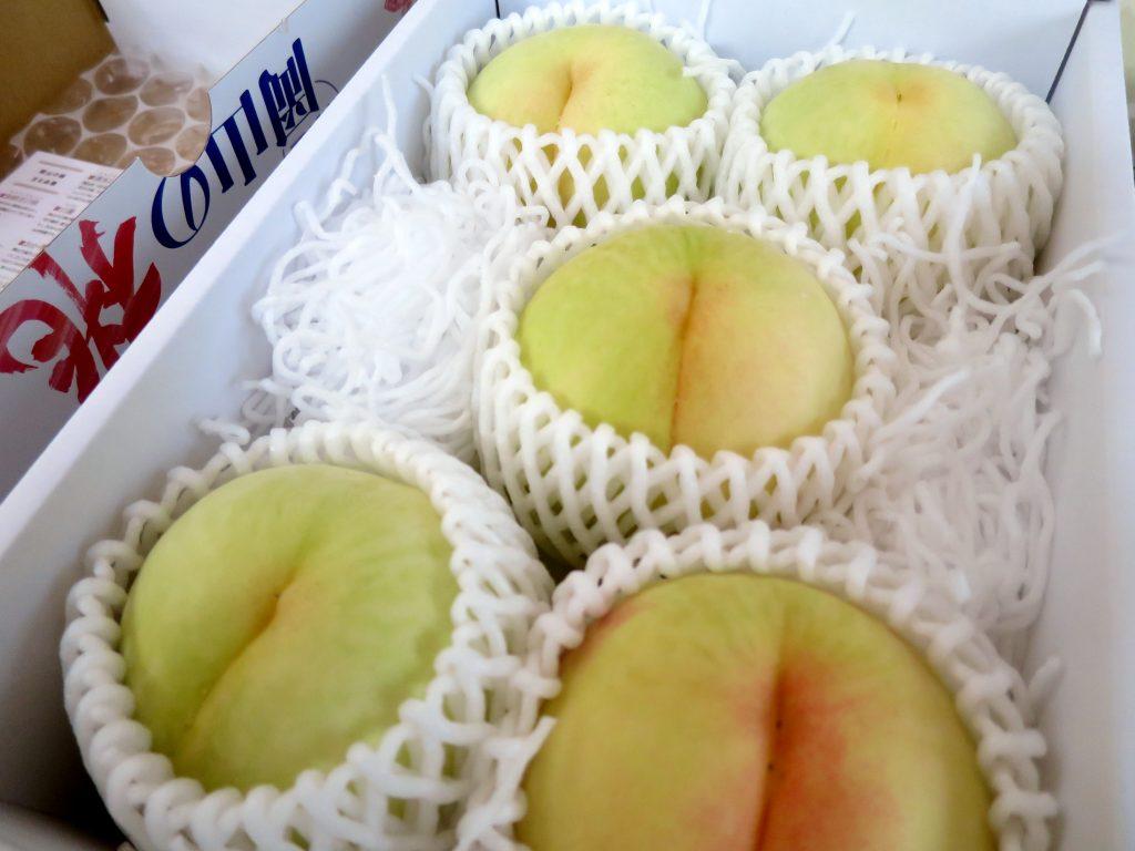 桃の研究-晴
