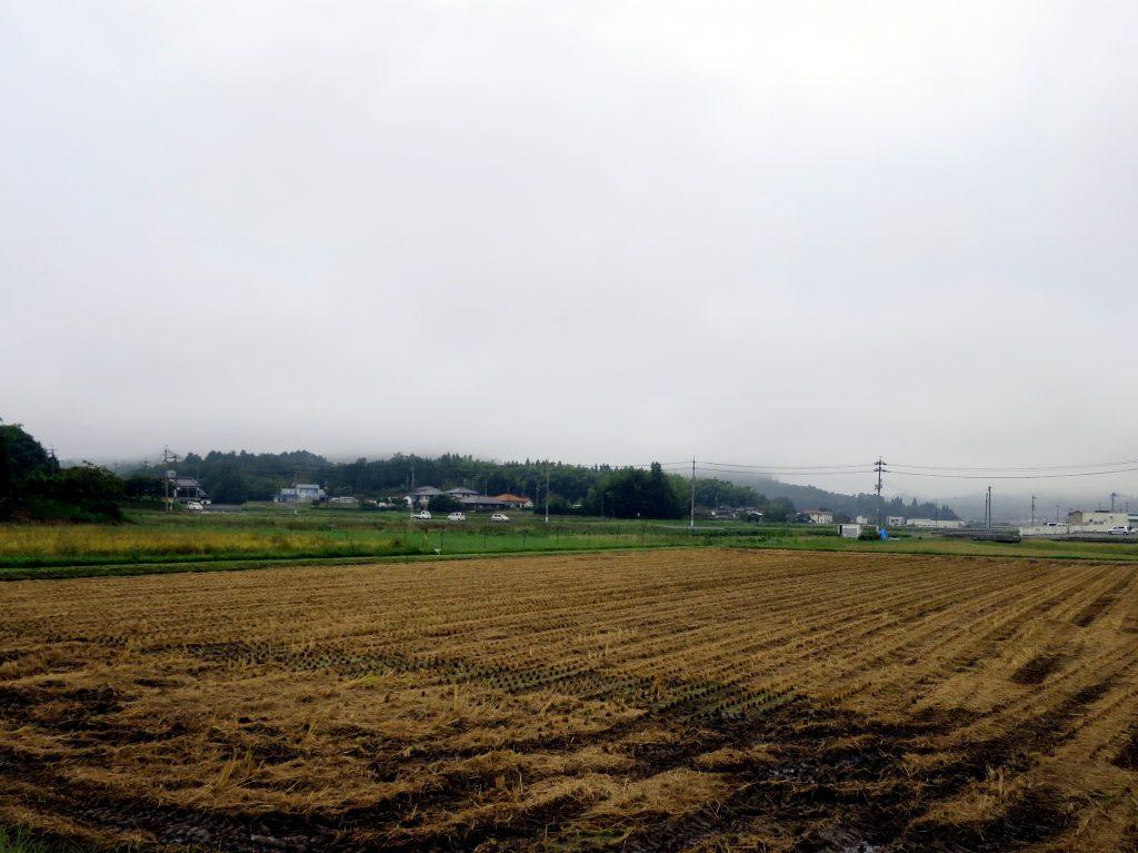 秋彼岸-曇ときどき雨
