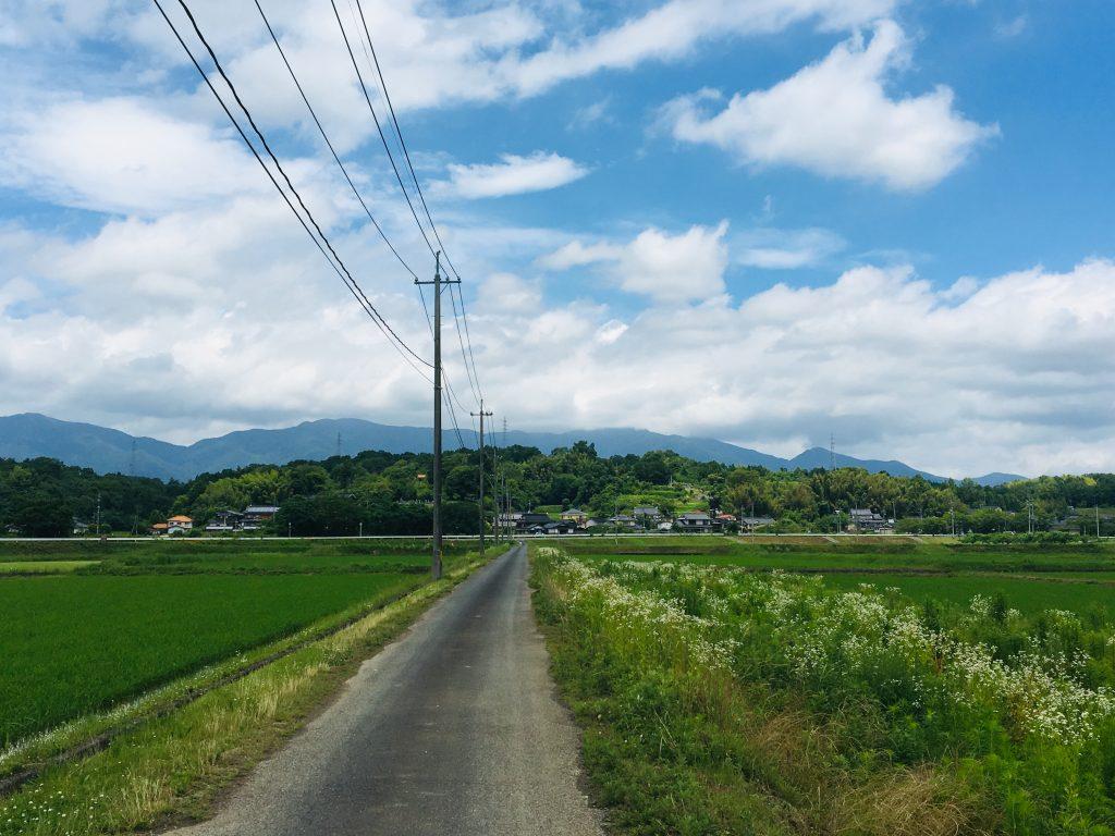 ご近所農家を視察-曇ときどき晴